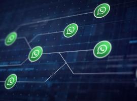 WhatsApp Business API: o que é e como pode ser explorada pelas empresas - Softium