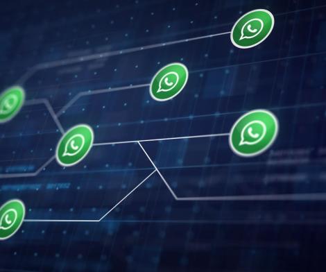 WhatsApp Business API: o que é e como pode ser explorada pelas empresas