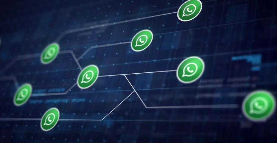 Whatsapp Business Api O Que E E Como Pode Ser Explorada Pelas Empresas Blog Da Tactium